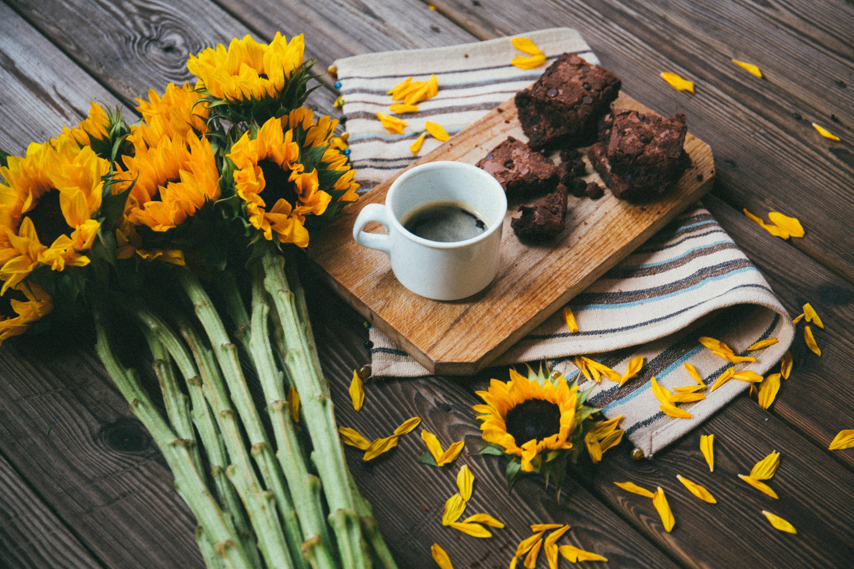 Healthiest Black Bean Brownies