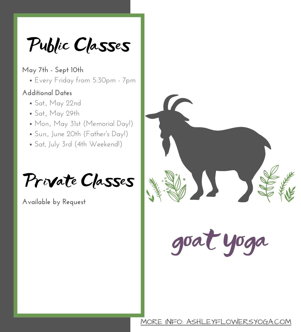 Goat Yoga at Smiling Hill Farm